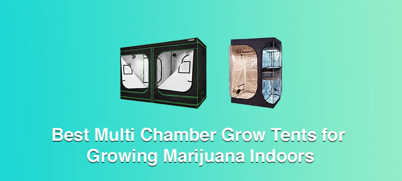 Best Multi Chamber Grow Tents for Growing Marijuana Indoors