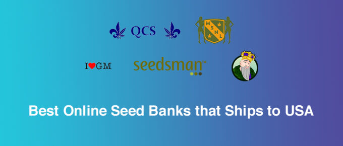 Best Online Seed Banks
