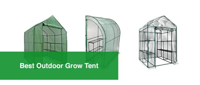 Best Outdoor Grow Ten