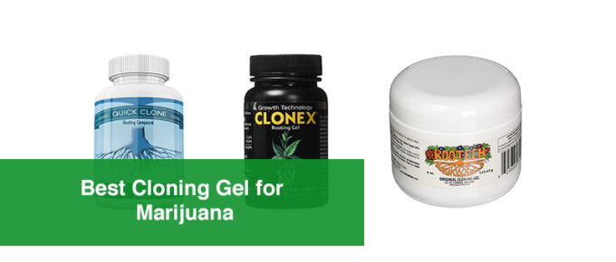 Best_Cloning_Gel_for_Marijuana[1]