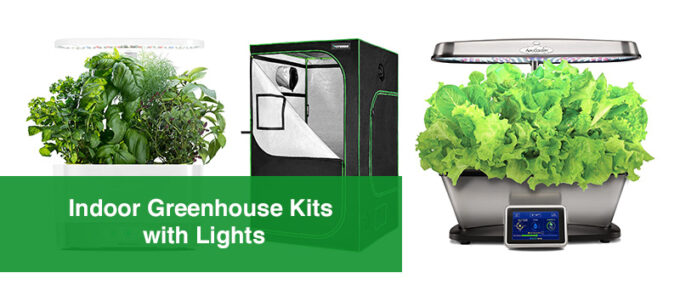 Indoor Greenhouse Kits with Lights