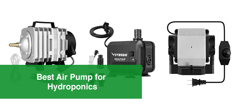 Best Air Pump for Hydroponics