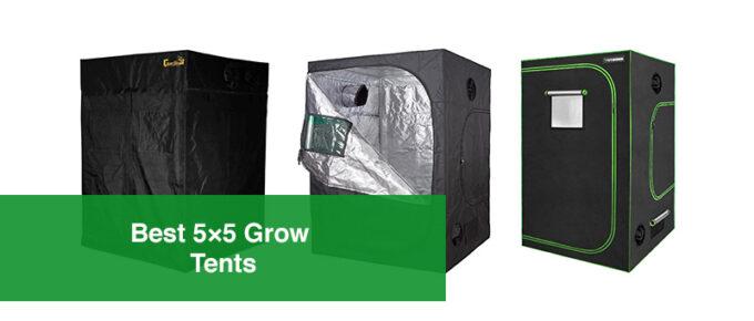 Best 5×5 Grow Tents