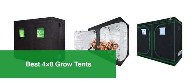 Best 4×8 Grow Tents