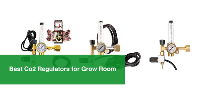 Best Co2 Regulators for Grow Room