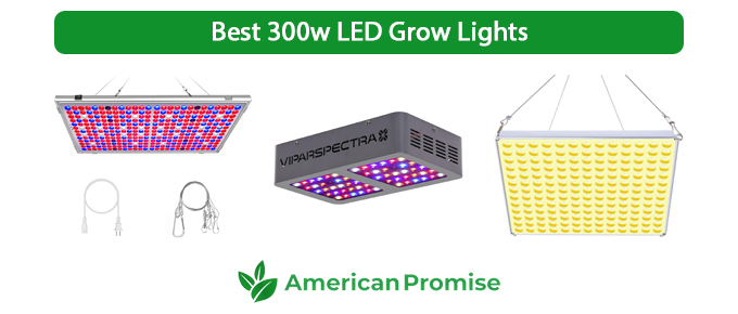 Best 300w LED Grow Lights