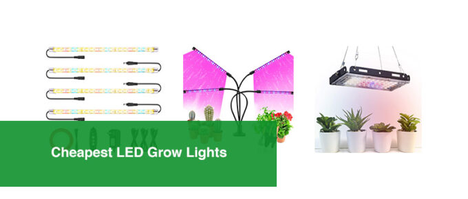 Cheapest LED Grow Lights