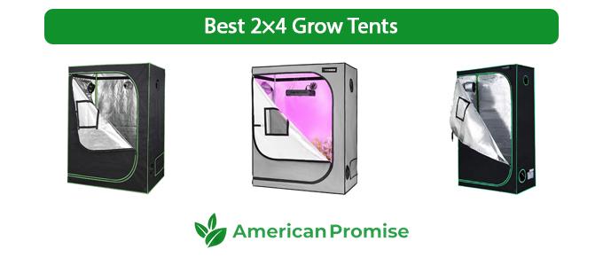 Best 2×4 Grow Tents
