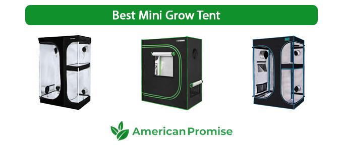 Best Mini Grow Tent