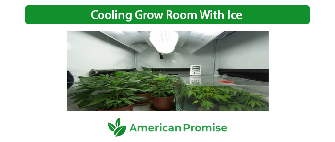 Cooling Grow Room With Ice