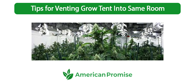 Tips for Venting Grow Tent