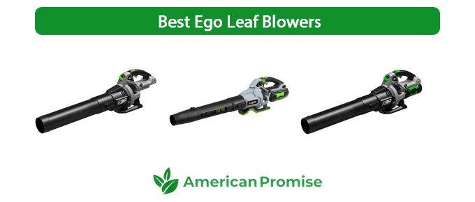 Best Ego Leaf Blower