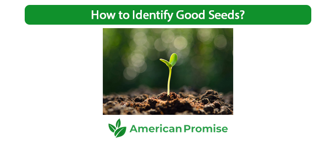 How to Identify Good Seeds