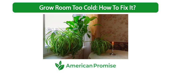 Grow Room Too Cold How To Fix It