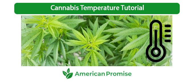Cannabis Temperature Tutorial