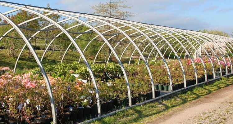 Hoop House Greenhouses