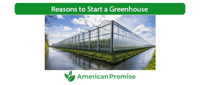 Reasons to Start a Greenhouse