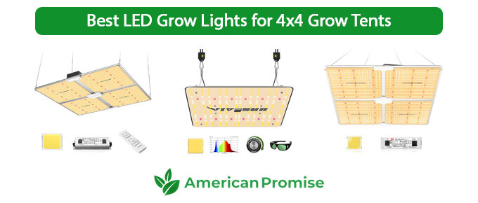 Best LED Grow Lights for 4x4 Grow Tents
