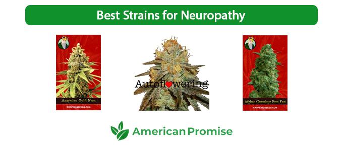 Best Strains for Neuropathy