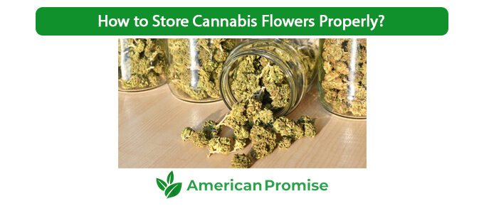 How to Store Cannabis Flowers Properly?